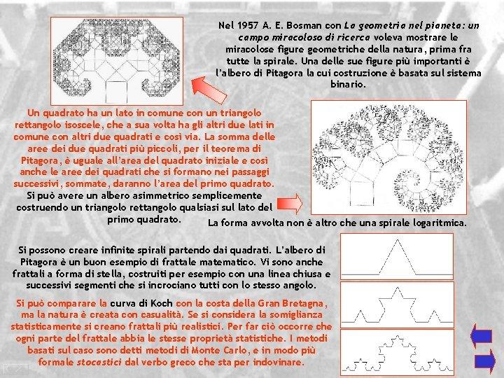Nel 1957 A. E. Bosman con La geometria nel pianeta: un campo miracoloso di