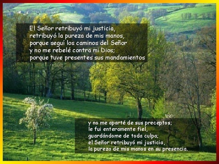 El Señor retribuyó mi justicia, retribuyó la pureza de mis manos, porque seguí los