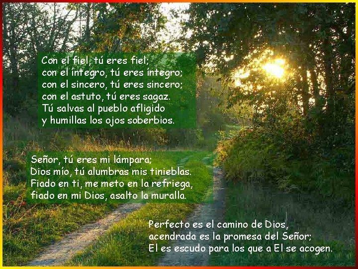 Con el fiel, tú eres fiel; con el íntegro, tú eres íntegro; con el
