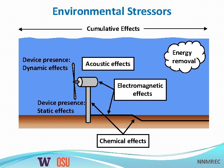 Environmental Stressors Cumulative Effects Device presence: Dynamic effects Acoustic effects Energy removal Electromagnetic effects