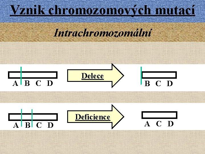 Vznik chromozomových mutací Intrachromozomální A B C D Delece Deficience B C D A