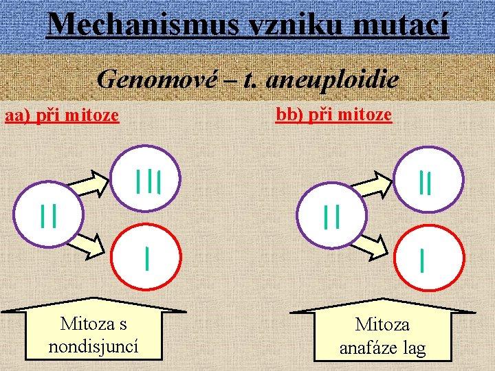 Mechanismus vzniku mutací Genomové – t. aneuploidie aa) při mitoze Mitoza s nondisjuncí bb)