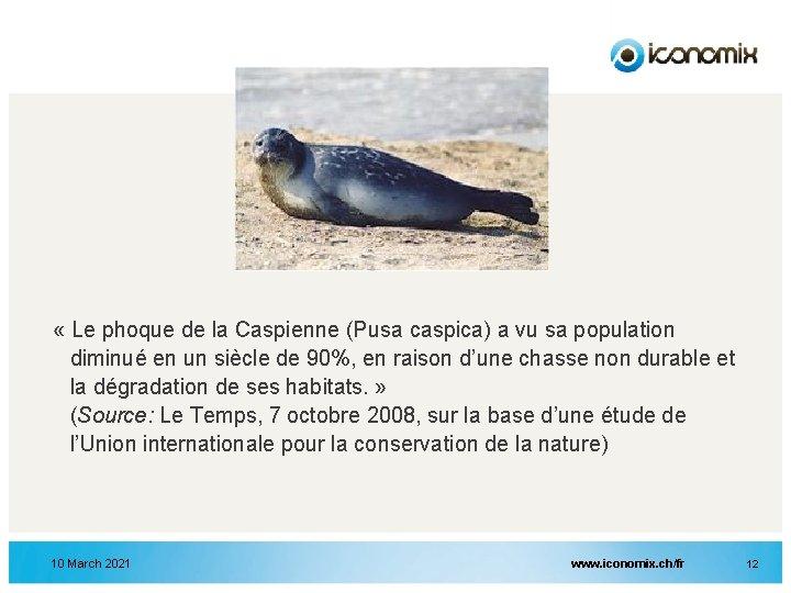 « Le phoque de la Caspienne (Pusa caspica) a vu sa population diminué