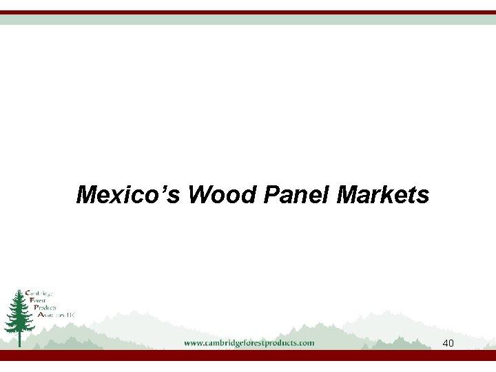 Mexico's Wood Panel Markets 40