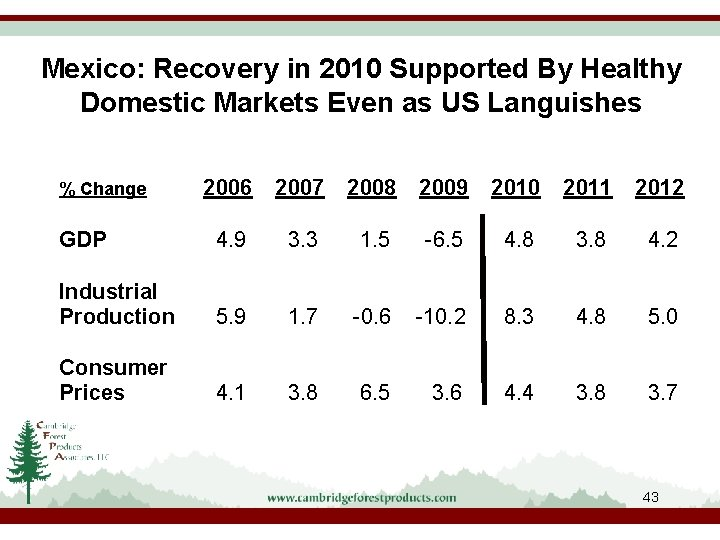 Mexico: Recovery in 2010 Supported By Healthy Domestic Markets Even as US Languishes 2006