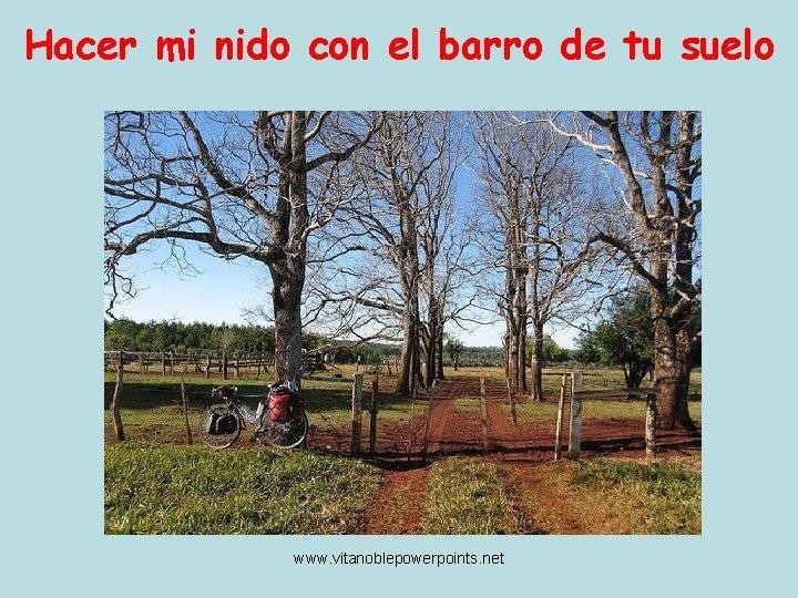Hacer mi nido con el barro de tu suelo www. vitanoblepowerpoints. net