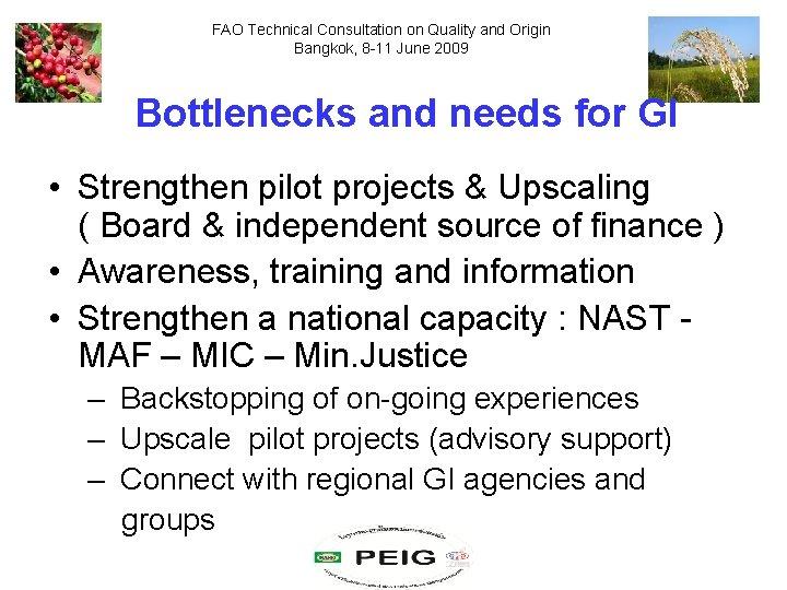 FAO Technical Consultation on Quality and Origin Bangkok, 8 -11 June 2009 Bottlenecks and