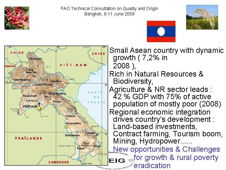 FAO Technical Consultation on Quality and Origin Bangkok, 8 -11 June 2009 - Small