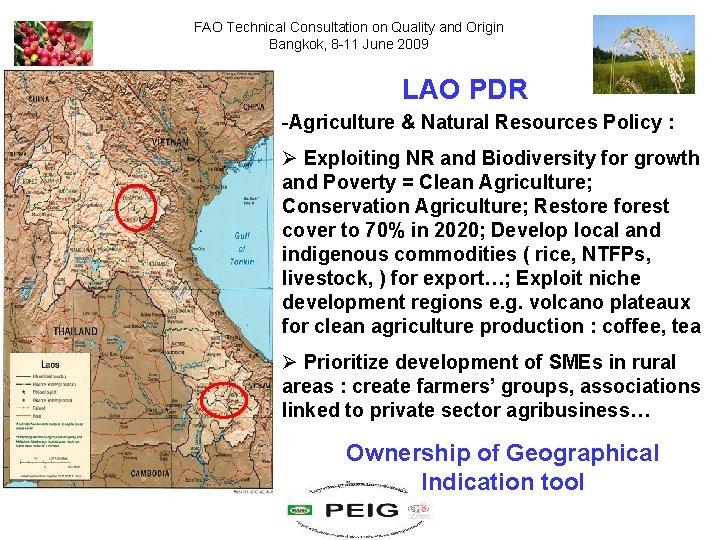 FAO Technical Consultation on Quality and Origin Bangkok, 8 -11 June 2009 LAO PDR