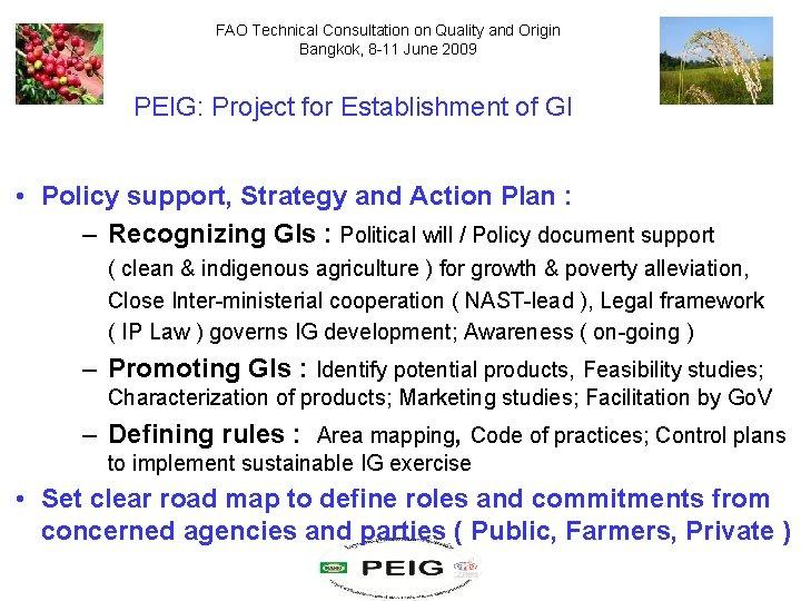 FAO Technical Consultation on Quality and Origin Bangkok, 8 -11 June 2009 PEIG: Project