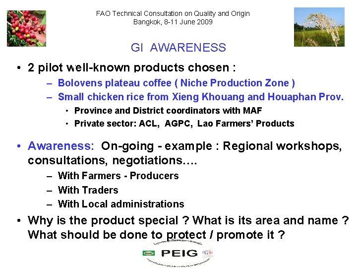 FAO Technical Consultation on Quality and Origin Bangkok, 8 -11 June 2009 GI AWARENESS