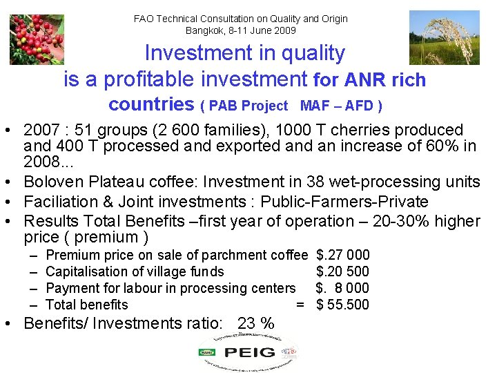 FAO Technical Consultation on Quality and Origin Bangkok, 8 -11 June 2009 Investment in