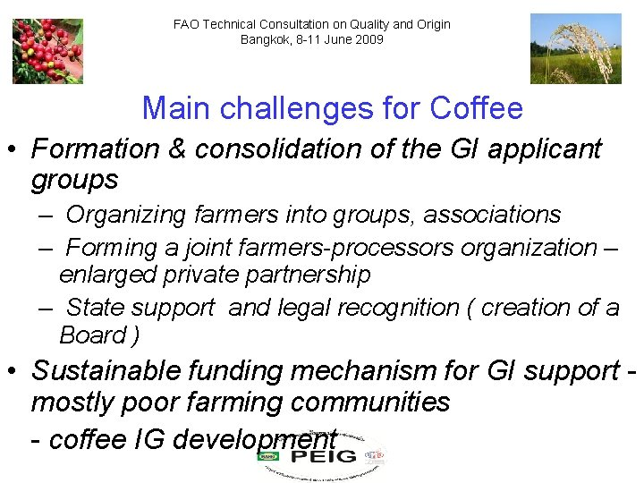 FAO Technical Consultation on Quality and Origin Bangkok, 8 -11 June 2009 Main challenges