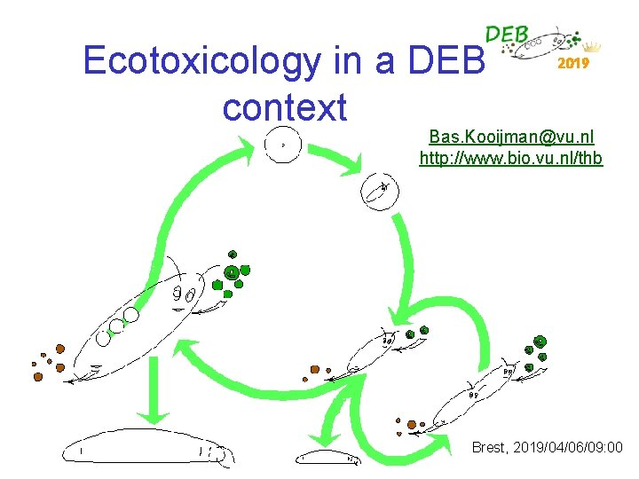 Ecotoxicology in a DEB context 2019 Bas. Kooijman@vu. nl http: //www. bio. vu. nl/thb