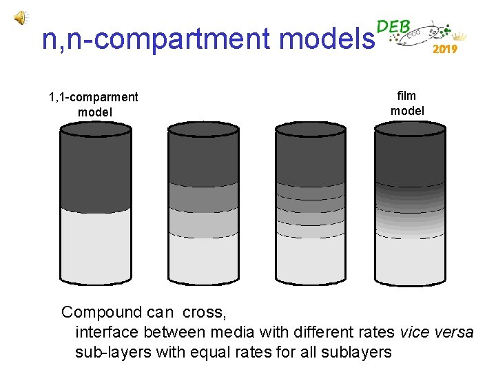 n, n-compartment models 1, 1 -comparment model 2019 film model Compound can cross, interface
