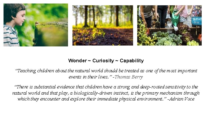 """Wonder ~ Curiosity ~ Capability """"Teaching children about the natural world should be treated"""