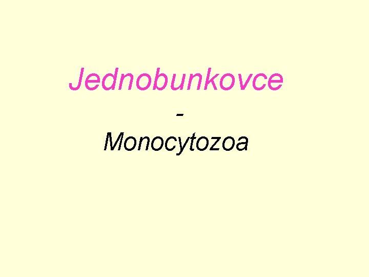Jednobunkovce Monocytozoa