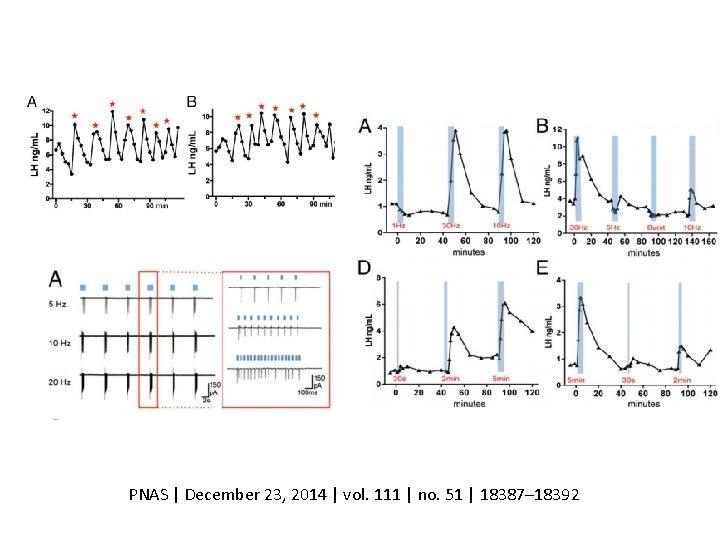 PNAS | December 23, 2014 | vol. 111 | no. 51 | 18387– 18392