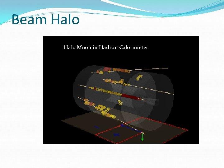 Beam Halo Muon in Hadron Calorimeter