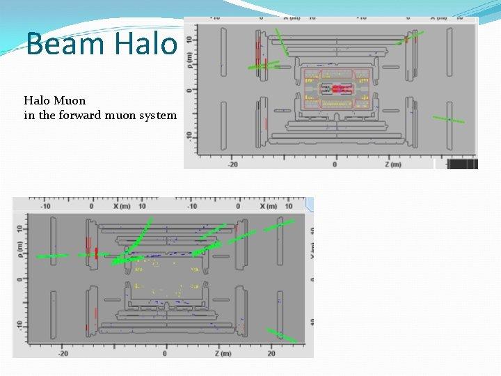 Beam Halo Muon in the forward muon system