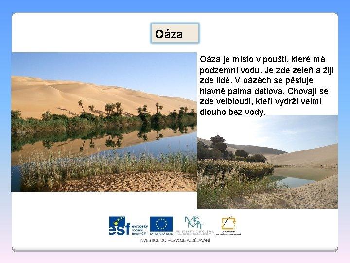 Oáza je místo v poušti, které má podzemní vodu. Je zde zeleň a žijí