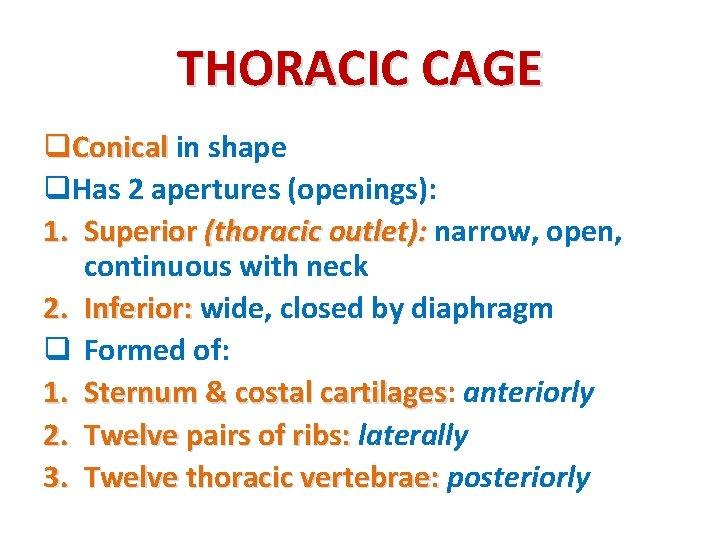 THORACIC CAGE q. Conical in shape q. Has 2 apertures (openings): 1. Superior (thoracic