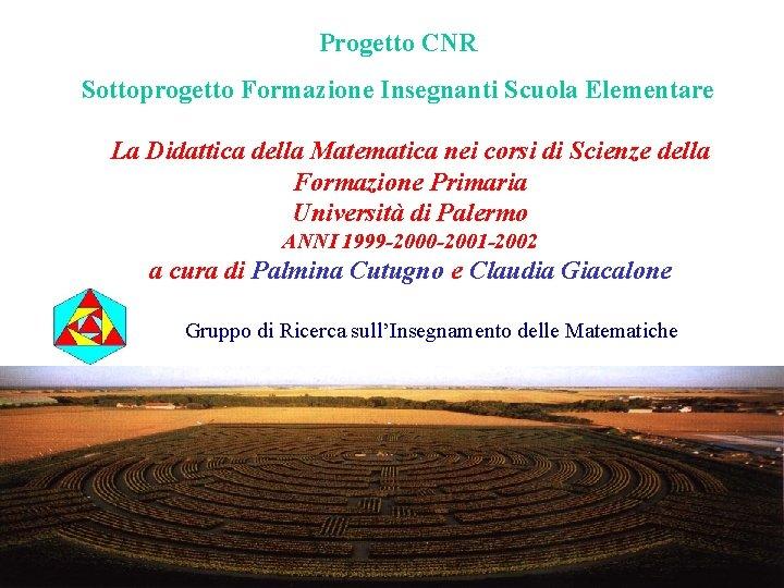 Progetto CNR Sottoprogetto Formazione Insegnanti Scuola Elementare La Didattica della Matematica nei corsi di