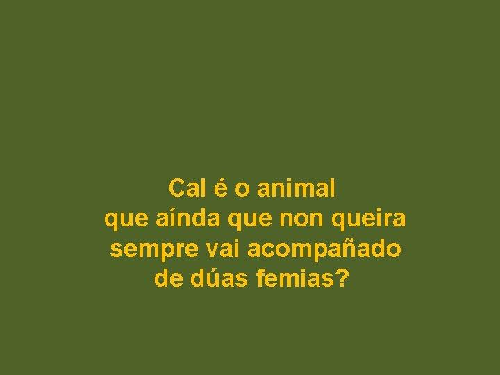 Cal é o animal que aínda que non queira sempre vai acompañado de dúas
