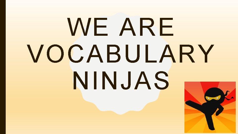 WE ARE VOCABULARY NINJAS