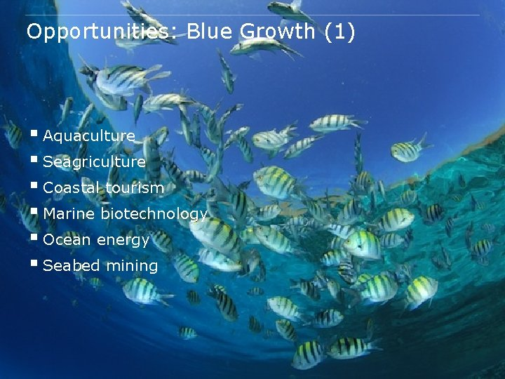 Opportunities: Blue Growth (1) § Aquaculture § Seagriculture § Coastal tourism § Marine biotechnology