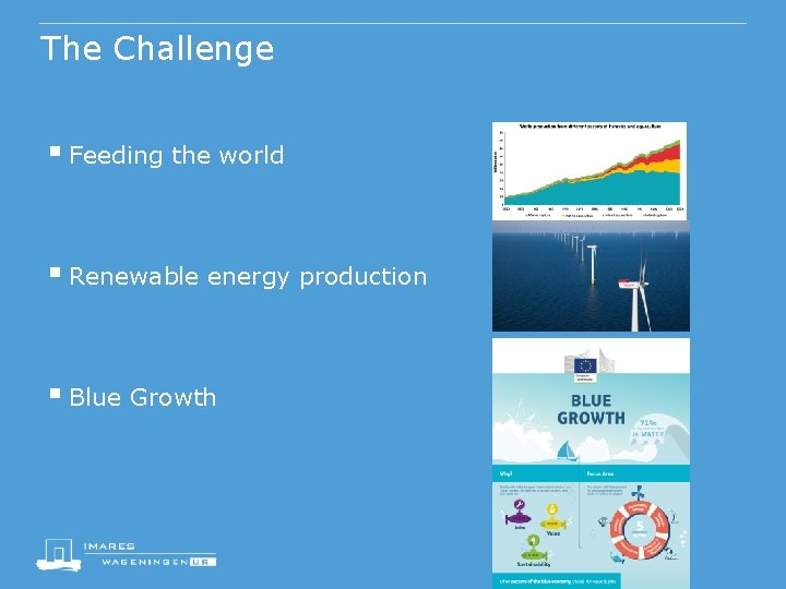 The Challenge § Feeding the world § Renewable energy production § Blue Growth