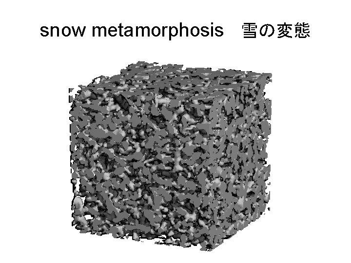 snow metamorphosis 雪の変態