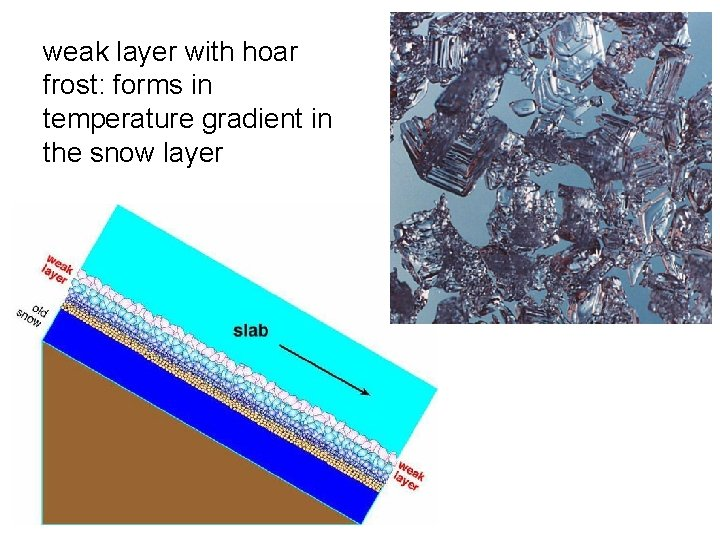 weak layer with hoar frost: forms in temperature gradient in the snow layer