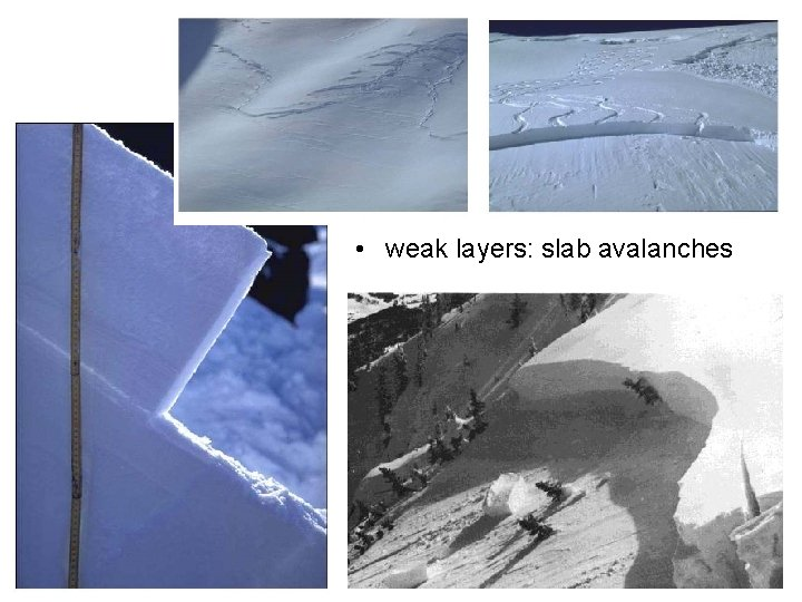 • weak layers: slab avalanches