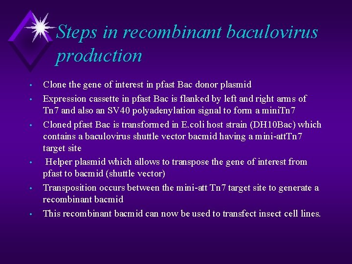 Steps in recombinant baculovirus production • • • Clone the gene of interest in