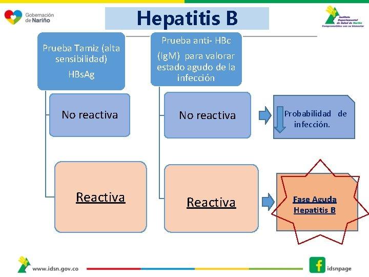 Hepatitis B Prueba anti- HBc Prueba Tamiz (alta sensibilidad) HBs. Ag (Ig. M) para