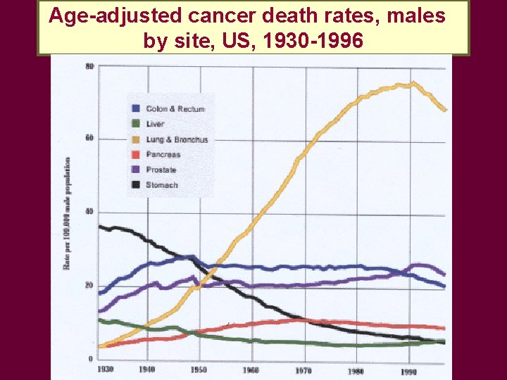 Age-adjusted cancer death rates, males by site, US, 1930 -1996