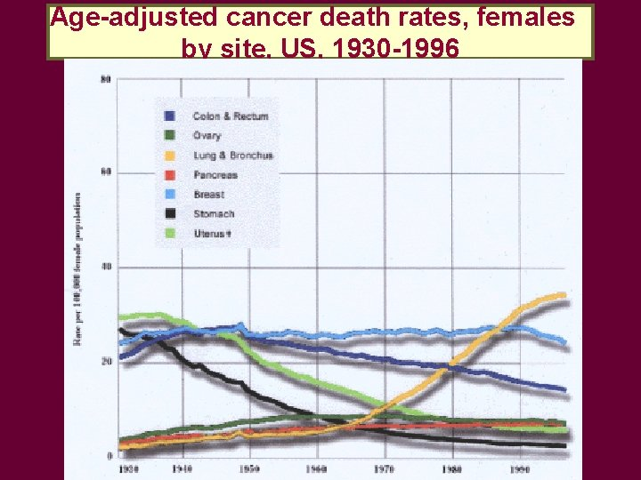 Age-adjusted cancer death rates, females by site, US, 1930 -1996