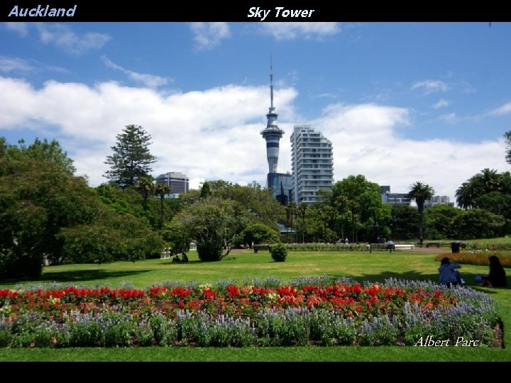 Auckland Sky Tower Albert Parc