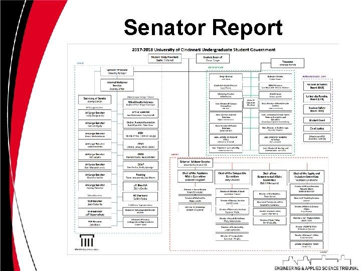 Senator Report