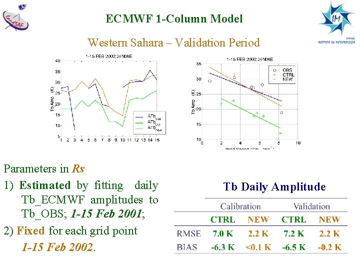 ECMWF 1 -Column Model Western Sahara – Validation Period Parameters in Rs 1) Estimated