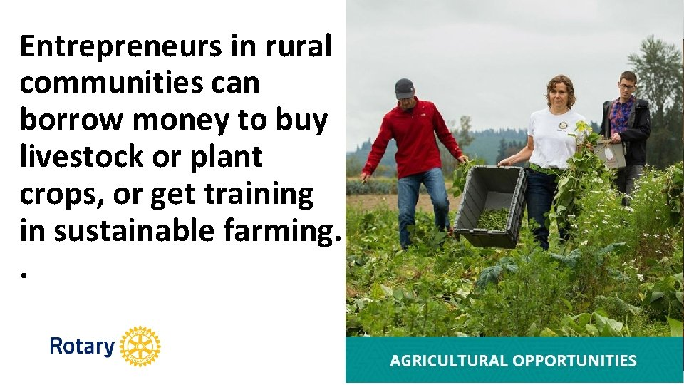 Entrepreneurs in rural communities can borrow money to buy livestock or plant crops, or