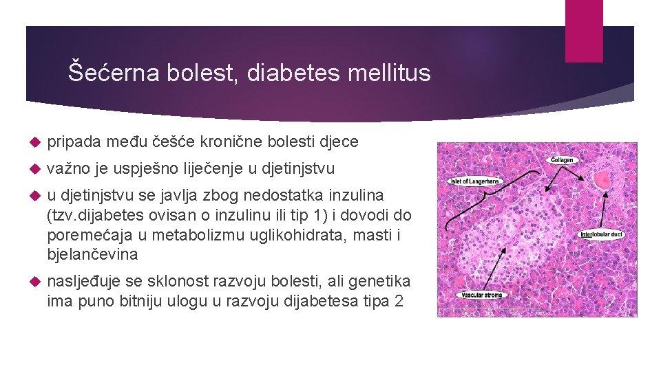 Šećerna bolest, diabetes mellitus pripada među češće kronične bolesti djece važno je uspješno liječenje