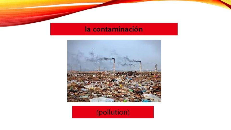 la contaminación (pollution)
