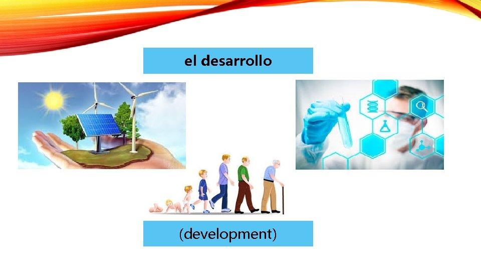 el desarrollo (development)