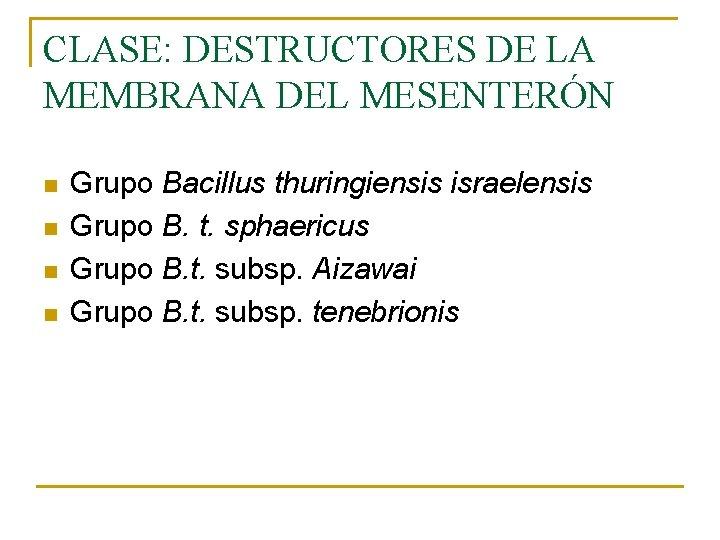 CLASE: DESTRUCTORES DE LA MEMBRANA DEL MESENTERÓN n n Grupo Bacillus thuringiensis israelensis Grupo