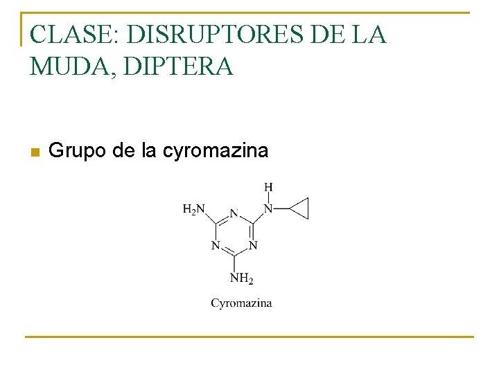 CLASE: DISRUPTORES DE LA MUDA, DIPTERA n Grupo de la cyromazina