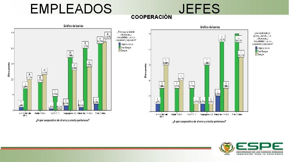 EMPLEADOS COOPERACIÓN JEFES