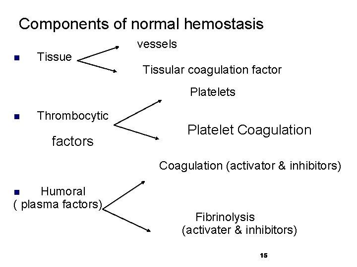Components of normal hemostasis n Tissue vessels Tissular coagulation factor Platelets n Thrombocytic factors