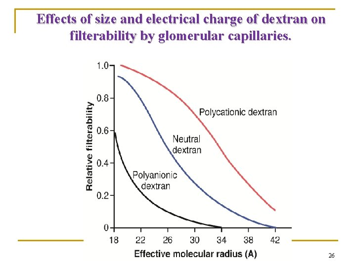 Effects of size and electrical charge of dextran on filterability by glomerular capillaries. 26
